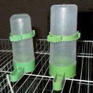 河南鸟用饮水器批发图片