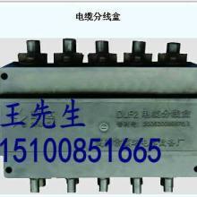 厂家直销电缆分线盒DLF2