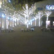 北京专业做各种灯具安装装饰彩灯图片