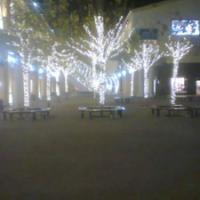 供应北京专业做各种灯具安装装饰彩灯串灯节日灯电路布置树灯安装88682836