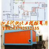供应燃煤导热油炉