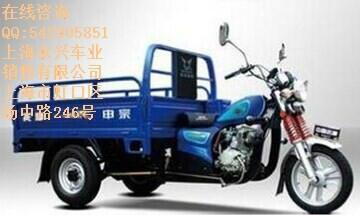 轮摩托车图片/轮摩托车样板图 (1)