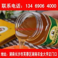 供应蜂巢蜜湖南长沙蜜蜂哥哥限长沙市购 长沙纯蜂蜜 湖南长沙土蜂蜜 家乡自产蜂蜜 真蜂蜜便宜批发批发