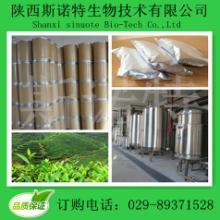 供应北豆根提取物 纯天然植物提取物 厂家大量现货批发