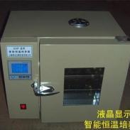 DHP303-5A恒温培养箱图片