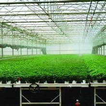 供应温室育苗床应