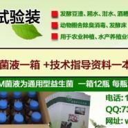 广州em菌水产保鲜不变质海参泥鳅图片