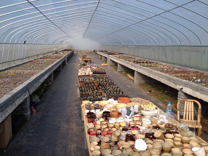 赤峰植觉园艺