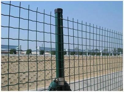 供应球场护栏网