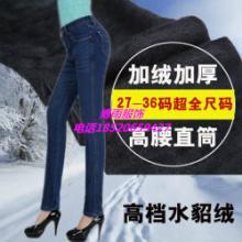 供应女式加厚牛仔裤清仓特价加绒加厚牛仔裤女冬糖果色彩色铅笔裤打底裤