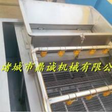 供应瓜果蔬菜清洗机