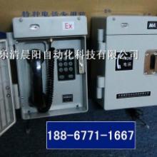 供应大型钢厂抗噪电话HAT86(XIII)P/T-E型图片
