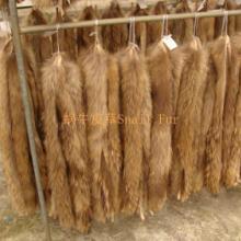 供应用于羽绒服 棉衣 卫衣的皮草厂家批发定做本色貉子毛帽条批发