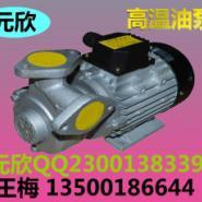 元新高温水泵图片