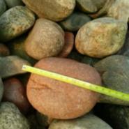 山西晋中5-8cm变压器鹅卵石图片