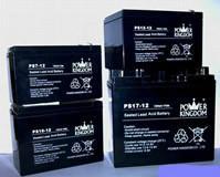 石家庄免维护铅酸蓄电池图片