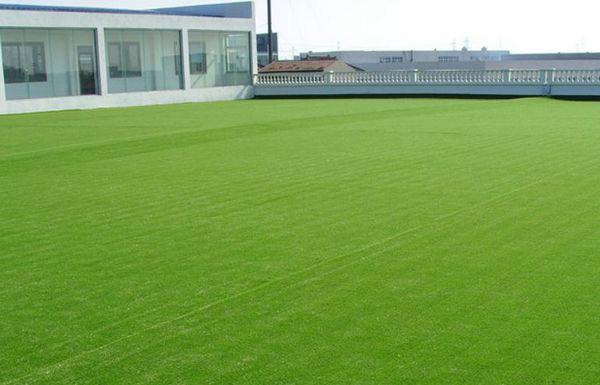 草坪虫害综合防治技术