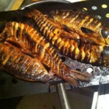 供应用于烤鱼的烤鱼烧烤机器烤炉湖北荆州价格