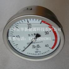 供应进口耐震压力表,天津进口耐震压力表厂家,天津进口耐震压力表制造商批发
