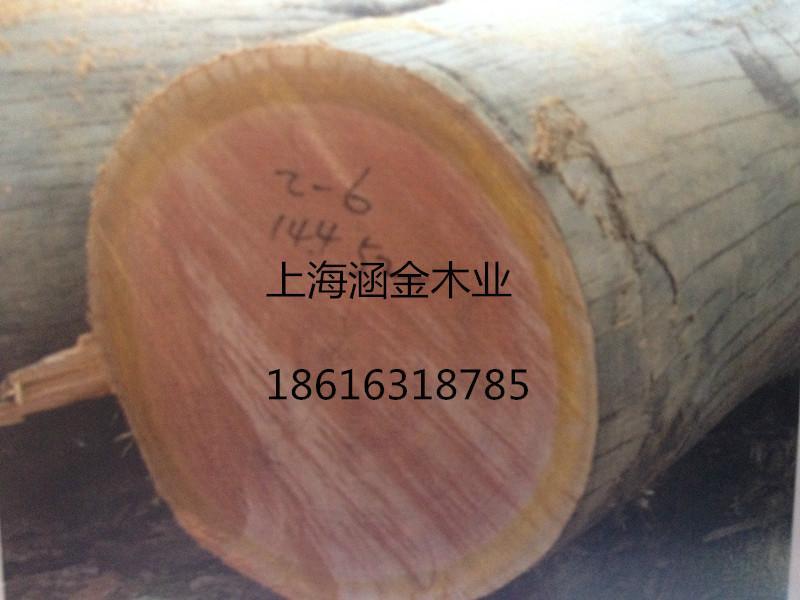 供应用于家具的山樟原木,山樟进口原木,上海山樟木防腐木厂家