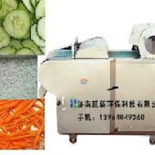 供应大型切菜机球根茎切菜机