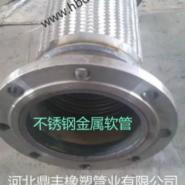 吉林大口径金属软管图片