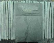 板岩绿色蘑菇石图片
