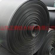 供应pe土工膜,HDPE土工膜