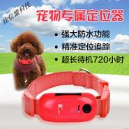 深圳宠物防盗追踪器图片