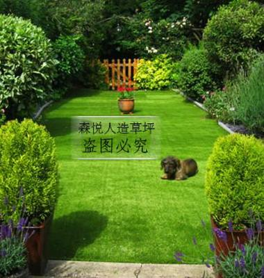 人造草坪图片/人造草坪样板图 (4)