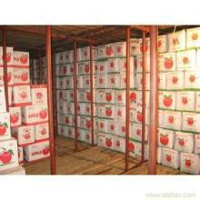 供应六安西商批发市场水果冷库【弗克制冷】水果冷库建造设计施工维护批发