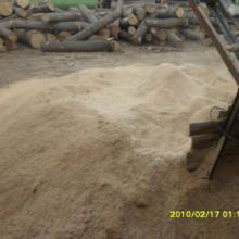 供应发酵床锯沬 木屑,发酵床锯末价格,发酵床锯末哪里出售图片