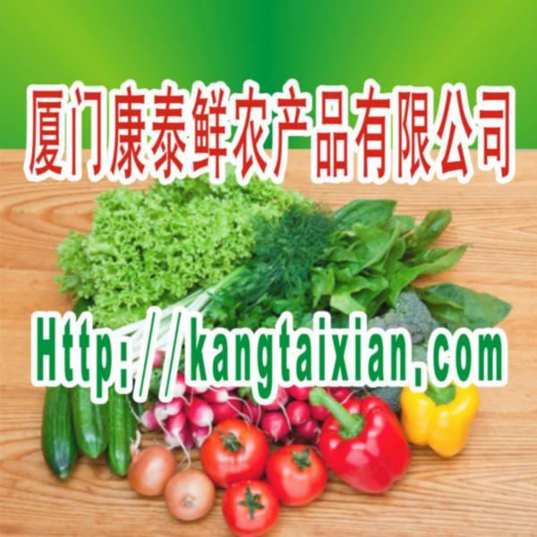 供应厦门新鲜蔬菜