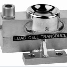 厦门价格合理的电子秤厂家推荐电子秤