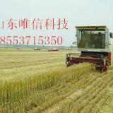 供应大型联合小麦收割机