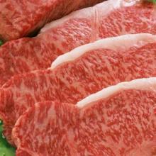 供应用于熟食的安阳松亚精品牛腱厂家直销价格