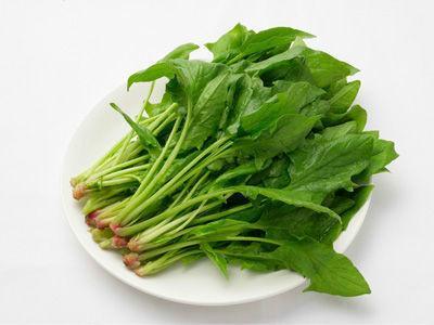 厦门新鲜蔬菜图片/厦门新鲜蔬菜样板图 (4)