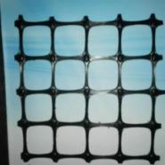 钢塑土工格栅图片