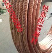 20导电率铜包钢绞线图片