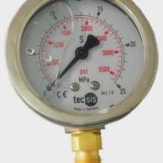 YN-60公斤表充油表英文表面压力表图片