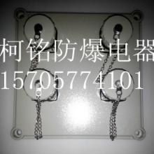 供應上海化工成套檢修電源箱報價/防爆檢修箱供應商/定做防爆電器成套圖片