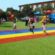 运动草坪彩虹跑道草高20mm颜色多种图片