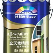 全天候晴雨抗污外墙漆图片