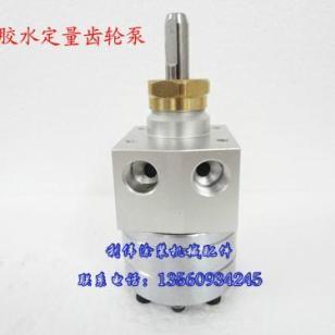一级品质静电喷漆齿轮泵图片