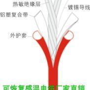 不可恢复式缆式线型定温火灾探测器图片