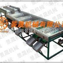 供应大蒜分选机、专业生产 QC-6大蒜分选机 果蔬分选机